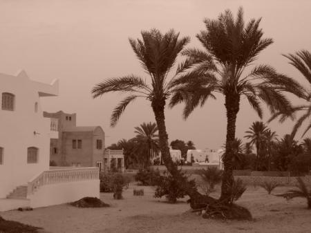 Meetic tunisie