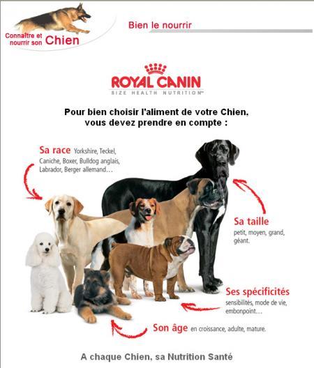 Manon12bis blog for all the dogs pour tous les for Alimentation chien maison