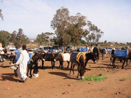 Site de rencontre professionnelle maroc