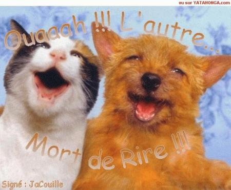 chat acces visiteur Fontenay-sous-Bois